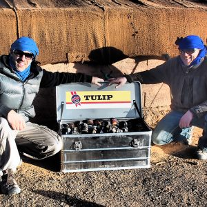 Alubox.com A081 Expedition to Sahara rally, beer box. in Intercontinental Rally - the real way to Sahara